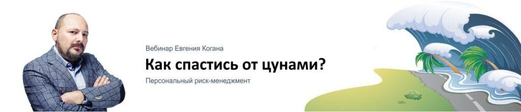 """Вебинар Евгения Когана """""""" Как спастись от цунами?"""""""