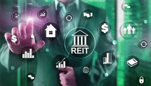 Что такое REIT фонды и их преимущества?