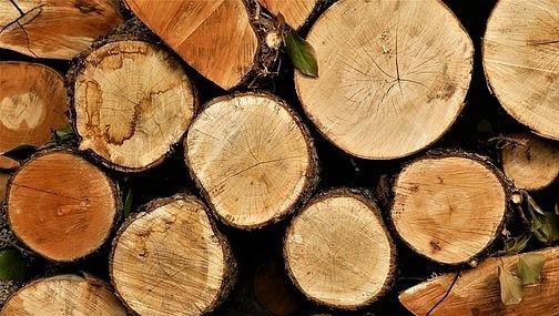 Рост цен на древесину