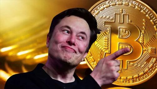 Илон Маск и крипторынок