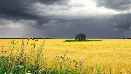 «Не покидает ощущение: нынешняя спокойная картинка – затишье перед… бурей? Нет, пока, скорее, не бурей. До бури еще далековато. »