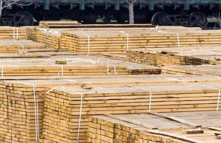 Динамика цен на древесину – безумие постковидной экономики