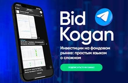 Отмечаем 2 года сервису для самостоятельных инвесторов BidKogan