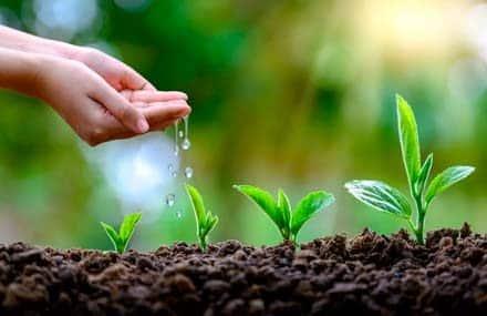 Инвестиции в компании «экологов». Хороший момент для покупки «Экологического» сертификата