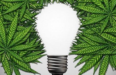 Инвестиции в компании Канадских «экологов». Еврооблигационный сертификат
