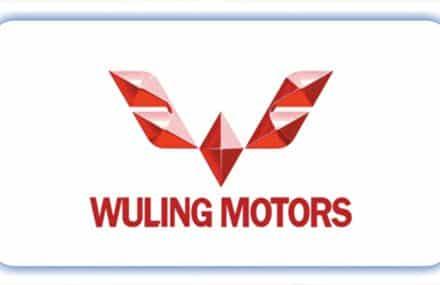 Взлет акций Wuling Motors (305 HK) – инвестировать или нет?